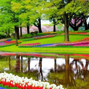 رحلات هولندا