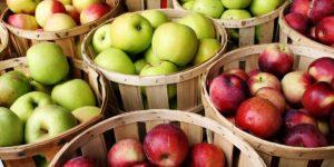 استيراد التفاح من تركيا